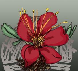oleander logo
